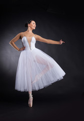 beautiful ballet dancer standing on one foot.