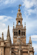 La Giralda Bell Tower of Seville Cathedral in Spain