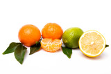 Citrus isolated on white background