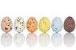 Candy covered Easter eggs in a line isolated