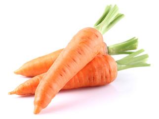 Fresh carrot in closeup