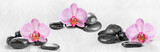 Horizontal panorama with pink orchids and zen stones on a wooden