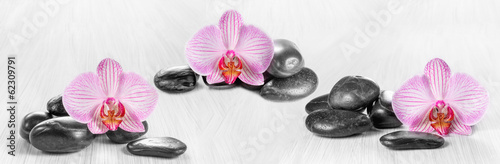 Foto op Plexiglas Orchidee Horizontal panorama with pink orchids and zen stones on a wooden