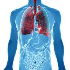 lung cancer in x-ray view