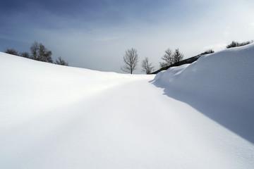 strada coperta di neve tra i boschi, Alpi italiane