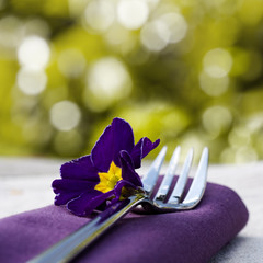 Place setting close-up