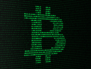 Bitcoin données binaires