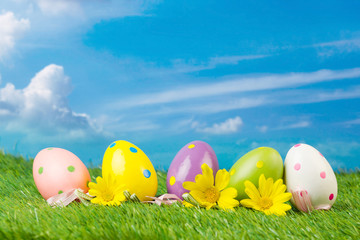 Easter eggs hiding in the grass over blue sky