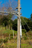 Electric pole in a rural area