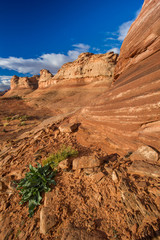 Red Rock Sandstone Formations near Page AZ