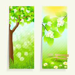 Two Vertical Banners
