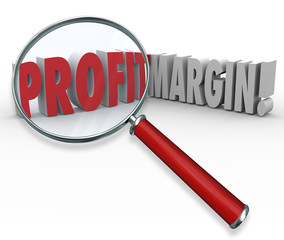 Profit Margins Magnifying Glass Words Big Earnings Zoom Earned I