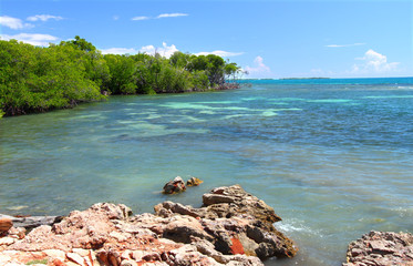 Guanica Reserve Puerto Rico