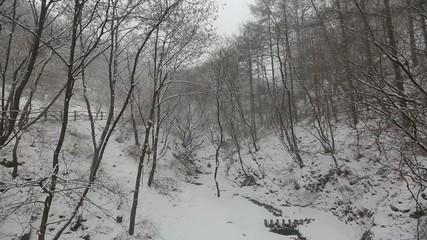 Snowy Korean Mountains