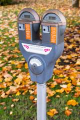 Dual Parking Meter Needs Payment Coin Slot Autumn Downtown