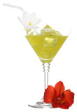 martini glass of cocktail with ice and flowers isolated on