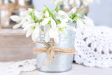 Beautiful snowdrops on light background
