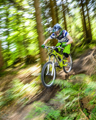 rasanter Mountainbiker