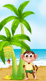 A smiling monkey at the beach near the banana plant