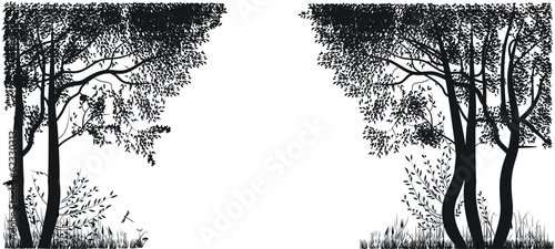 Silhouettes of trees in a forest glade
