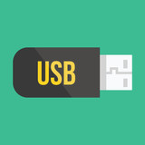 Vector Flash USB Device Icon