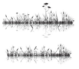 meadow grass reflected in water