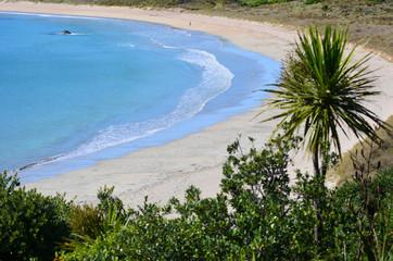 Matai Bay Karikari Peninsula - New Zealand