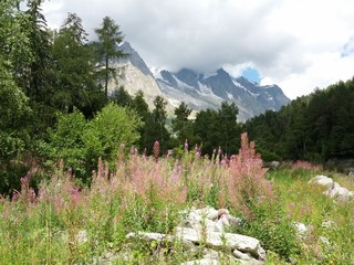 alpine landscape at Mont Blanc