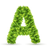 Letter  A,  vector alphabet of green leaves