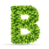 Letter  B,  vector alphabet of green leaves