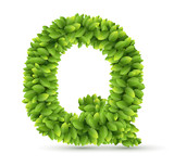 Letter  Q,  vector alphabet of green leaves