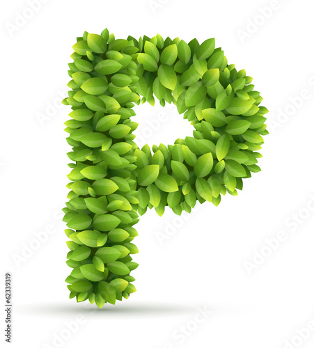 Letter P,  vector alphabet of green leaves