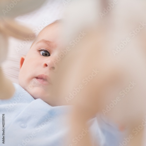 Portrait of cute baby boy