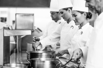 Row of chefs working at the stove