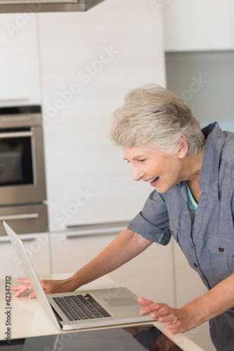 Senior woman using the laptop at the counter