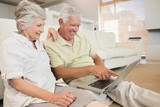 Cheerful senior couple using the laptop together sitting on rug