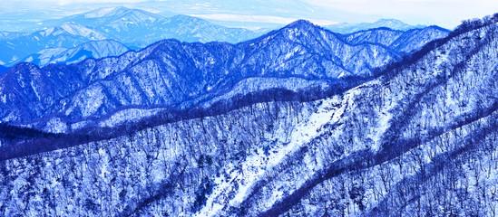 丹沢山地の雪景色
