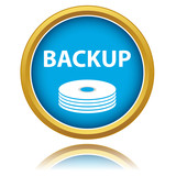 Vector backup icon