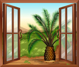 A window with a view of the palm plant