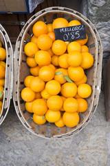 Orangen Mallorca Korb