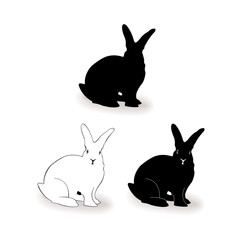 Form contour bunny, rabbit vector