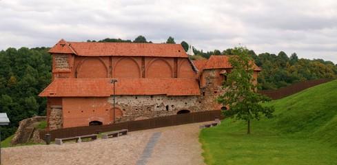 Remaining Gediminas Tower of upper castle