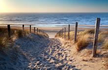 Chemin de plage de la mer du Nord dans le soleil d'or