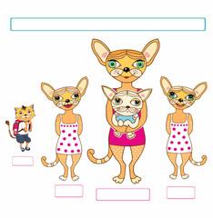 Koty - rodzina