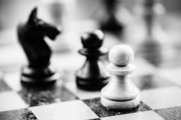 White and black chess pawns and knight standing on chessboard