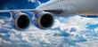 Постер, плакат: Big airliner