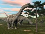 Fototapety Argentinosaurus dinosaur eating tree - 3D render