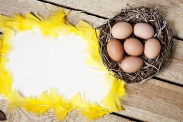 Easter background  - eggs in nest.
