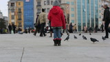 red girl feeding flock pigeon and dove with busy pedestrian
