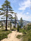 hiking trail in yosemite national park